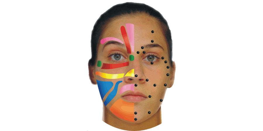 facial reflex 2